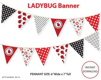 Ladybug banner, printable banner, DIY party, bunting pennants, lady bug banner  - BR 318