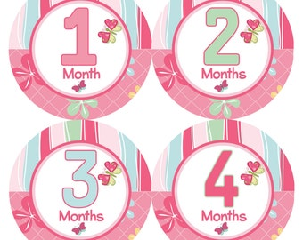 Monthly Onesie Stickers Girls- 1-12 Months Butterfly Kisses Printed Stickers