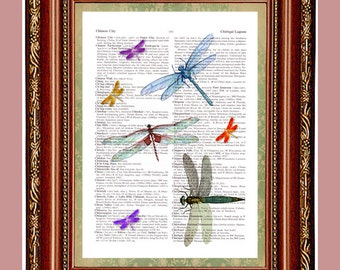Multitude of Dragonflies dictionary page art print  upcycled book page illustration book art print vintage Dragonflies print cp158