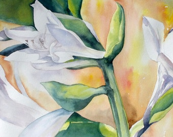 Lilly Flowers Watercolor Print