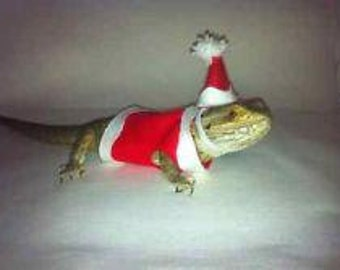 Christmas Costume Bearded Dragon Clothes