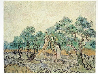 French Impressionist Art - Van Gogh - The Olive Orchard -  1977 Large Poster Sized Print 12 x 15