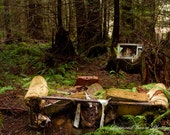 Nothing's On - Unusual Landscape Photograph of a Couch and TV Abandoned in the Forest Archival Photographic Print. 8 x 10 11x14