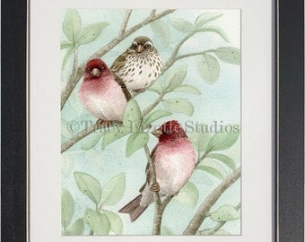 Bird Tree with Finches - archival watercolor print by Tracy Lizotte