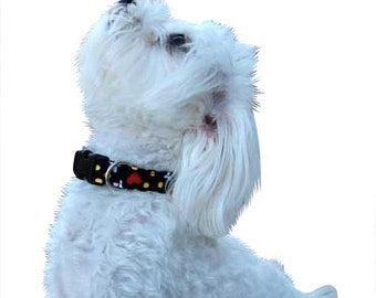 Dog Collar Tutorial PLUS Video and BONUS--Make it Yourself, Instructional EBook, Instant Download