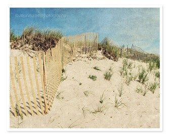Beach Dunes Photography, Beach Photography, Cape Cod Photograph, Coastal Wall Decor, Sand Sky Beige Tan Blue, Retro Seaside Art, Beach Decor