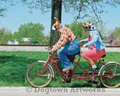 Bicycle Built for Two, large original photograph of two Boxer dogs wearing clothes riding a tandem bicycle