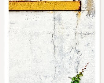 Climb - Urban Nature Photography - Minimalist Photo - Still Life Art - White Yellow Green Gray Color Photograph
