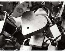 "Love Locks, Paris - black and white photography, padlocks on the bridge, 10"" x 14"" and larger - Original Fine Art Photograph"