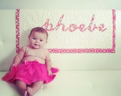 SALE Baby Girl Quilt Personalized Quilt Name Quilt Appliqué  Large Fabric Selection Crib Quilt Toddler Quilt Baby Girl quilt for sale