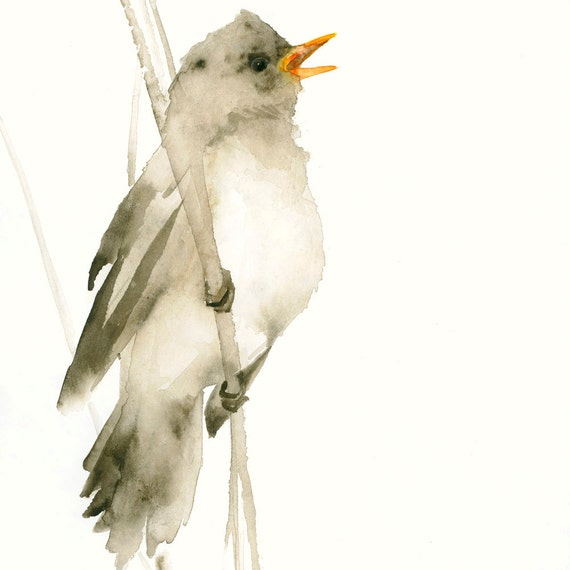 Bird Art Print Little Brown Songbird