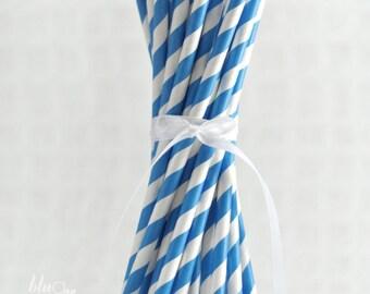 Striped Paper Straws - Blue