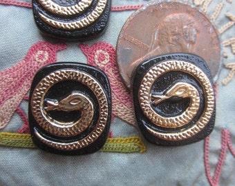 Six Black And Gold Symbolic Snake Cabochons