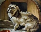 Dog Chromolithograph Sir Edwin Landseer No Place Like Home (Dog) Thomas Nelson Sons London 1890's