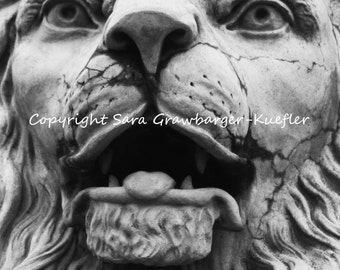 """Stone Lion Portrait - Fine Art Photograph - 8 x 10"""" - Architecture Photograph"""
