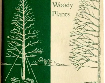 Vintage National Parks Tree Preservation Bulletin 'How to Transplant Trees and Other Woody Plants'