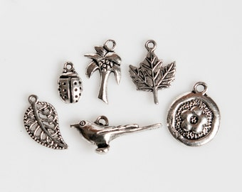 STORE CLOSING! CLEARANCE ChrmS318 - Silver Nature Charms - 2 sets of 6 (12 Pieces)