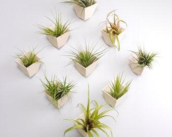 Hive planter- set of 9