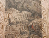 Hand-marbled page from The Chatterbox: Red Deer - LosingHerMarbles