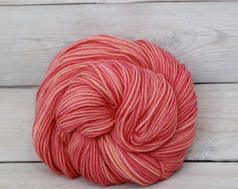 Calypso - Hand Dyed Superwash Merino Wool DK Light Worsted Yarn - Colorway: Sorbet