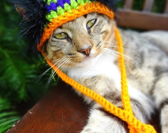 Cat Halloween Costume, Halloween Cat Hat, Halloween Hat for Cats, Hat for Cats - The Halloween Wackadoodle Hat for Cats and Small Dogs