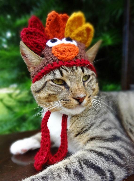 Top Turkey Cat Hat Turkey Cat Costume The Thanksgiving Turkey JB18