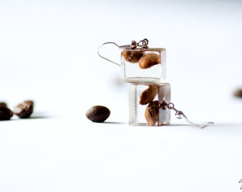 Brown earrings - Coffee beans jewlery - Clear cube Resin earrings - Dark chocolate jewlery - Coffee earrings - Real Coffee jewlery