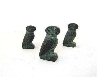 Athena Owl , Bird of wisdom in Greek mythology
