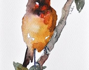 ORIGINAL Watercolor bird painting 5x8 Inch Orange bird