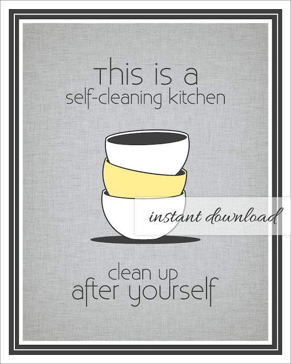 Clean Kitchen Sink Meme