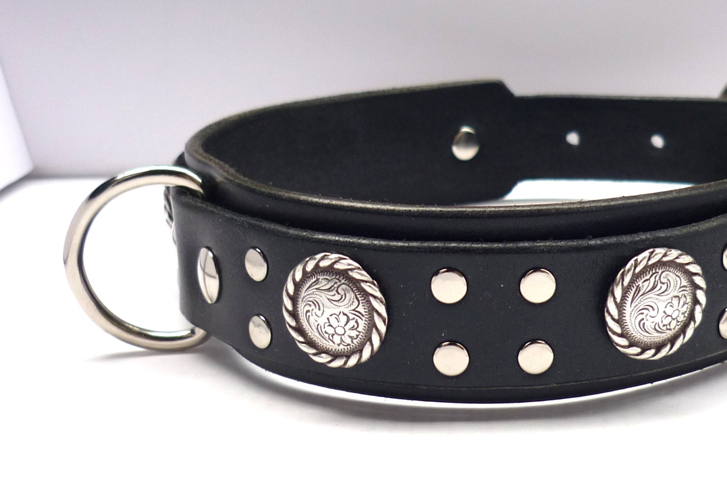 Lasso Dog Collar