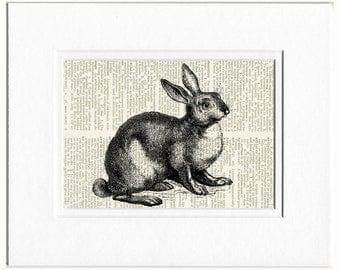 rabbit II dictionary page print