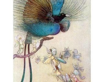 Bird of Paradise Fabric Block | Water Babies Illustration | Warwick Goble
