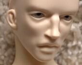 FreakStyle BJD Super Dollfie Drazen, Blank Head