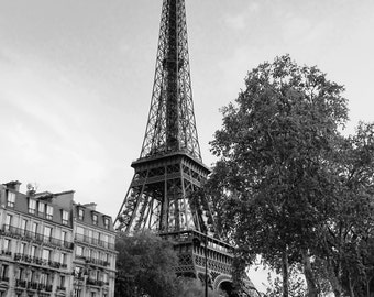 Eiffel Tower at Sunset in Paris, France - 8x10 Black & White Photo City Art Picture