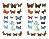 Butterfly Clip Art Digital Collage Sheets - Butterfly Images Assorted Sizes Jewelry, Magnets, Craft Projects, Scrapbooking