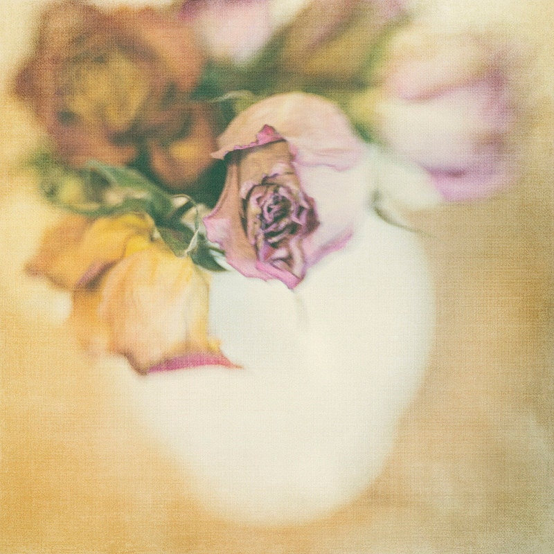 Dried Linen Roses 8x8 Flower Photography Home Decor Photo Modern Wall Decor Nursery Decor Office Decor