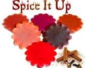 6 Spice It Up Tarts Candle Melts Assorted Cinnamon and Spice Scents