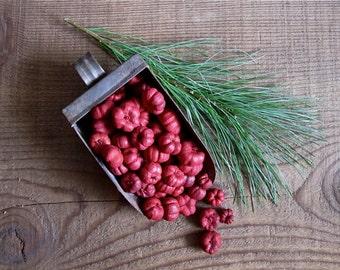 8 Cups - Burgundy Red Putka Pods