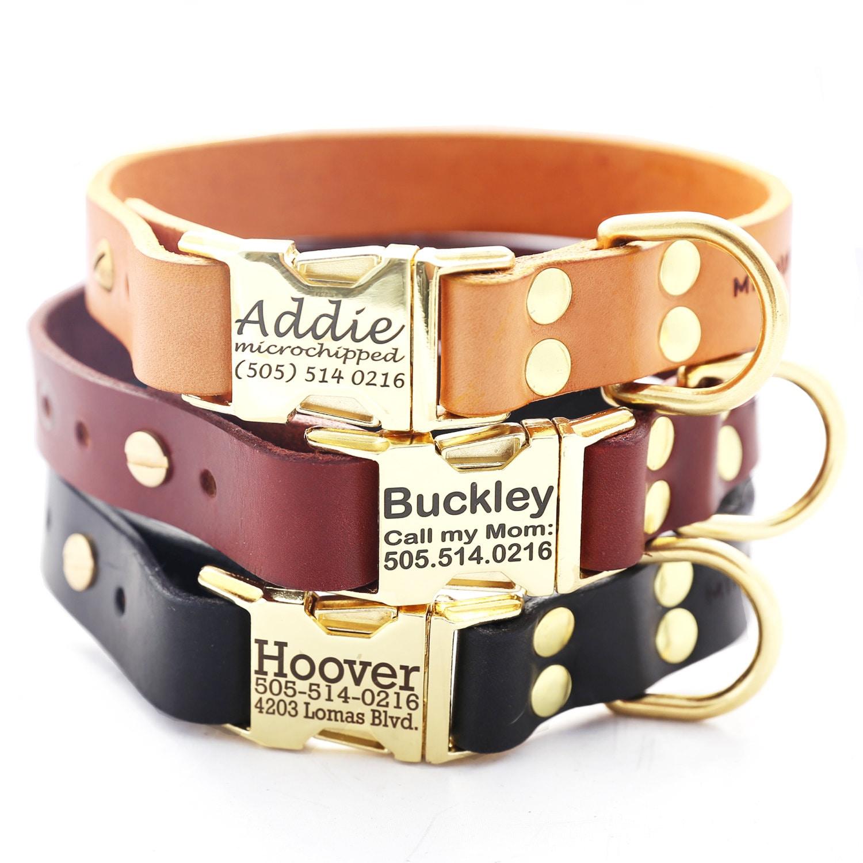 Best Custom Leather Dog Collars