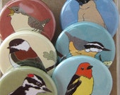 Wild Woodland Bird Magnets--Original Artwork--Birder Gift
