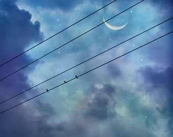 Crescent Moon Photograph, Celestial Print, Stars, Birds, Clouds, Sky, Twilight, Evening, Dusk, Teal, Blue, Purple, Lavender - Night Birds