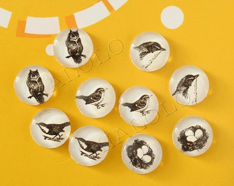 10pcs handmade assorted bird theme round clear glass dome cabochons / Wooden earring stud 12mm (12-9805)