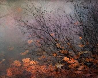 leaves Autumn landscape photography pond canvas gallery wrap home decor