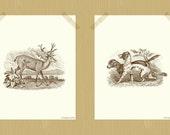 Dog and Deer Printable Two Print Set Hunting Lodge Style 8 x 10 Coffee Brown Cream Animal Prints Dog Print Deer Print Antler Print Woodland