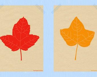 Printable Fall Leaves Print Set 5 x 7 Autumn Leaf Prints Falling Leaves Fall Print Autumn Leaves Print Maple Leaf September October Colors