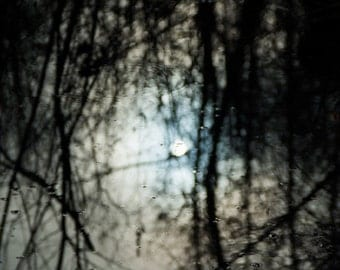 Abstract Art Photography Sun Reflection through Forest in Pond Wall Art Room Decor Blue - Reflection of the Winter Sun - Art Photography