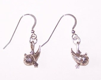 Sterling Silver COMET Earrings -  French Earwires - Nature, Cellestial, Star