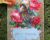 Vintage 1913 Best Wishes Postcard with Gold, Floral Embellishments and Pair of Birds, Glossy, Gorgeous