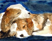 Sleepy Puppies ACEO Print